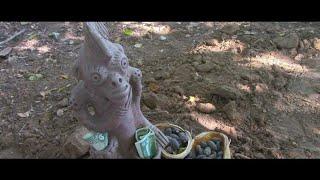 EL dios DE LA ABUNDANCIA DE LOS ANTEPASADOS - ATERRADORES SECRETOS QUE HABIAN MUERTO