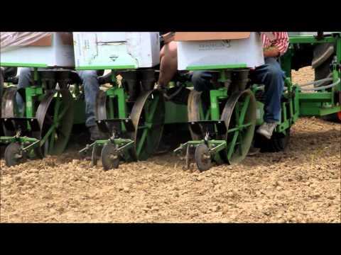Bioenergy Crop Planting