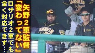 阪神タイガースのロサリオがヤバすぎる…2軍戦でも、状況は全く変わらなかった。