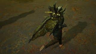 Path of Exile: Necrotic Cloak