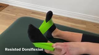 Ankle Sprain Protocol