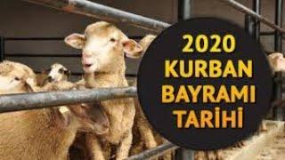 Qurban Bayrami Tebrikleri 2020 Qurban Bayramina Aid Tebrik Videolari Bayram Videolari Youtube