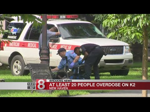 Up to 25 people overdose on K2 on the New Haven Green