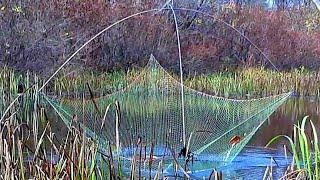 ЛОВЛЯ на ПАУК осенью ПОДЪЕМНИК на Протоках Рыбалка Пауком