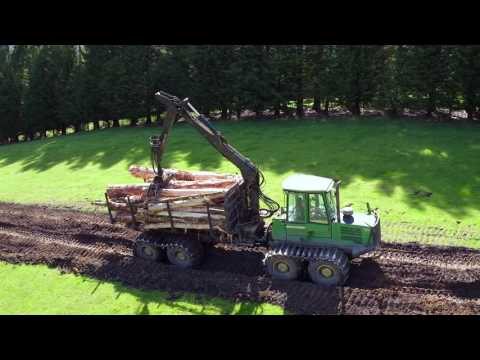 Forest Management Group Logging in Southland NZ with Alpine Logging and Southern Transport.