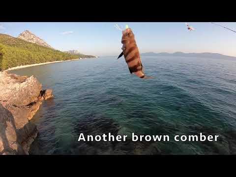 Fishing In Croatia (& Most Venomous Fish In The Adriatic!)