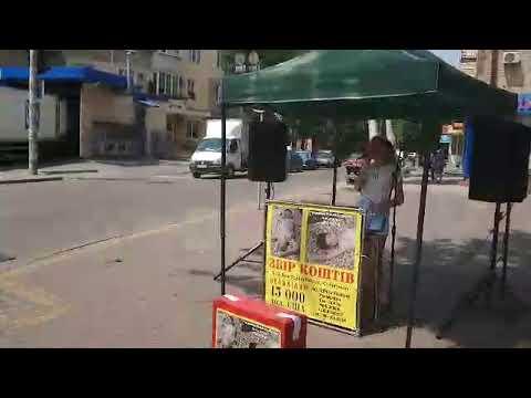 РИА Мелитополь: Концерт