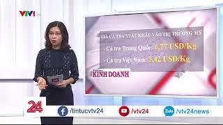 Điểm báo: Cá tra Việt bán rẻ do … tự hạ giá - Tin Tức VTV24