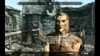 Best race for a mage in Skyrim