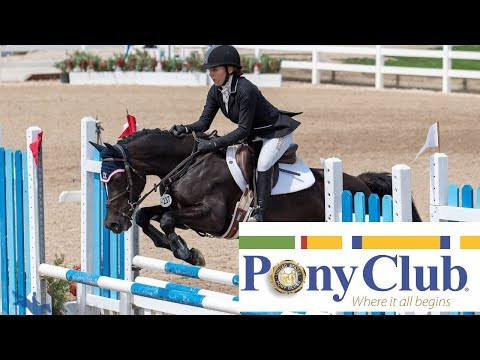 United States Pony Club - My Thoughts, Experiences, And Opinions