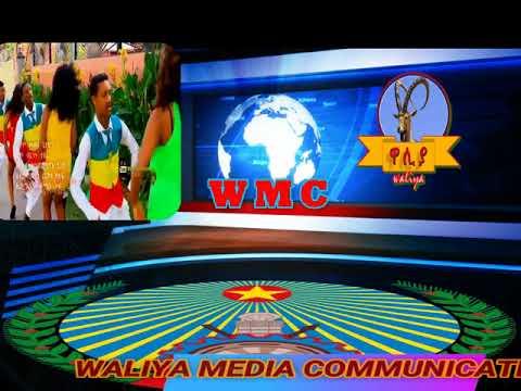 voe waliya media communication special program WMC-ET
