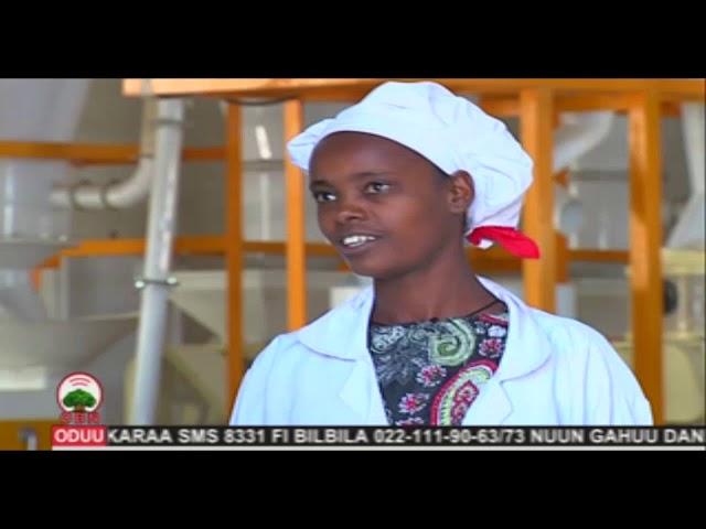 Komii Warshaa Daakuu  Yuuniyeenii qonnaan bultoota Lumee Adaamaa Muddee 07, 2011