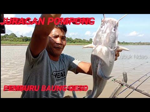 MANCING BAUNG GESO