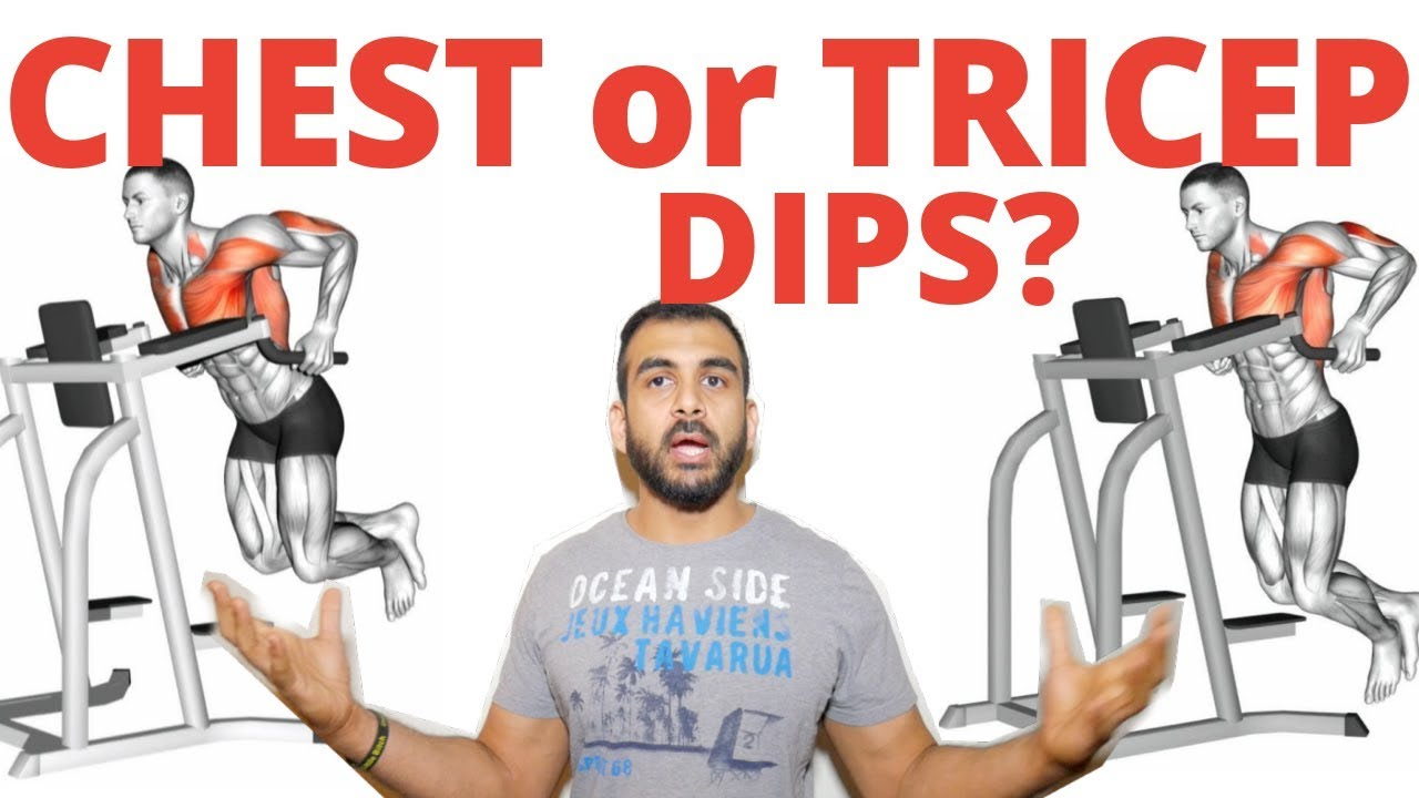 chest dips vs tricep dips which exercise is better youtube