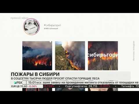 Сибирь горит: Медведев потребовал от подчинённых личного контроля за лесными пожарами.