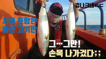 포항 선상 삼치 방어 낚시 (파월풀한 손맛,아니 몸맛) 뉴대양호