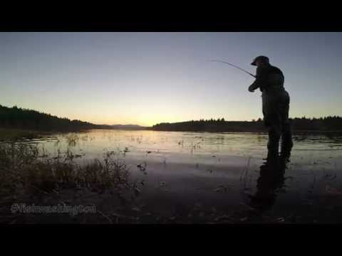 Fishing For Puget Sound Chum Salmon