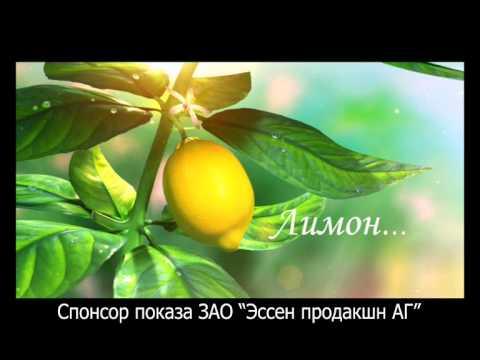 15 авг 2014. Домашнее консервирование, апельсиновый джем. Ролик о том как в домашних условиях приготовить вкуснейшее лакомство.