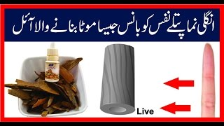 Dar Cheeni Aur Akhroot|Dundy Jaisa Mota Ling|Nafs Ko Mota Karna|Desi Oil|
