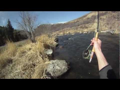 GoPro Tailwater Fly Fishing From Steamboat Springs, Colorado