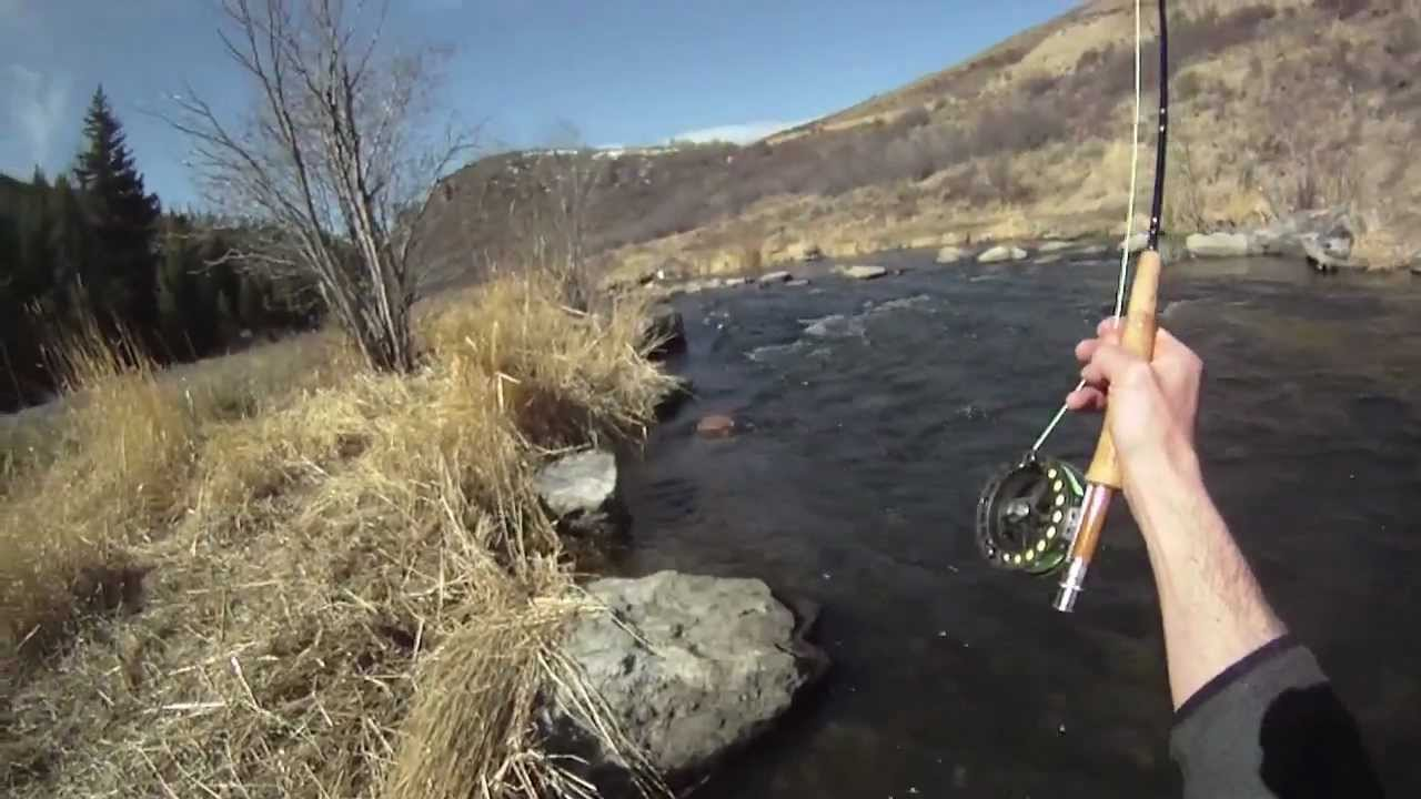 Gopro tailwater fly fishing from steamboat springs for Fishing colorado springs