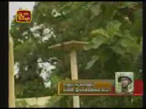 LTTE Radio station - Voice of Tigers was captured by SLA