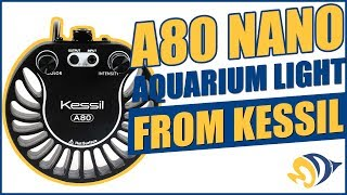 A80 Nano Aquarium Light from Kessil