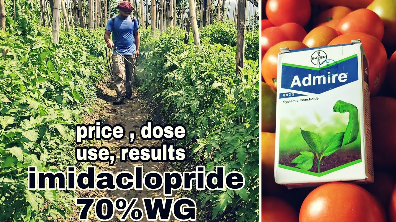 Download imidaclopride 70%WG | Bayer admire |  systamic inscticide | PraveenThakur