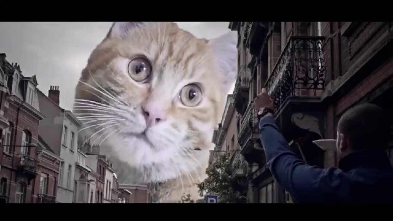 Catzilla  Trailer Parody of Godzilla HD  YouTube