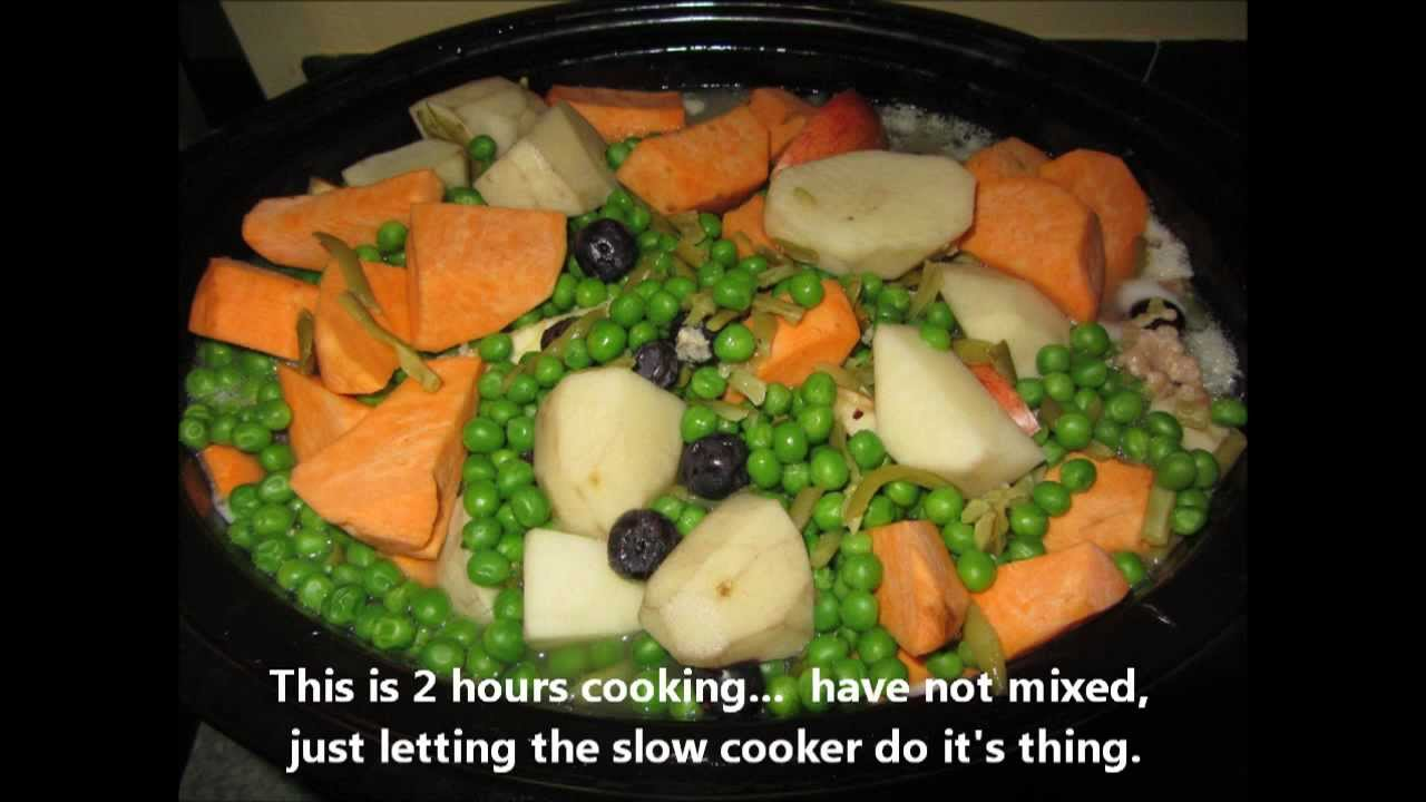 Slow cooker homemade dog food chicken ground turkey veggies and slow cooker homemade dog food chicken ground turkey veggies and fruit youtube forumfinder Choice Image