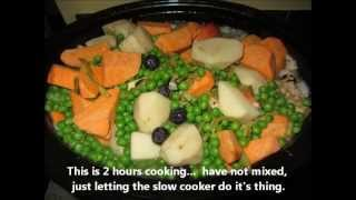 Slow Cooker Homemade Dog Food - Chicken, Ground Turkey, Veggies And Fruit