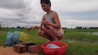 Amazing Beautiful girl Grill Fish - Easy to cooking fish on the rice fields