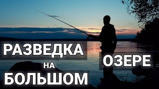 РЫБАЛКА НА ПОПЛАВОК РАЗВЕДКА год не был а тут рыбалка с поплавком Красивое видео