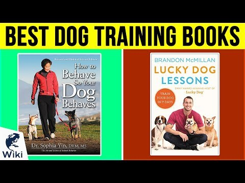 10 Best Dog Training Books 2019