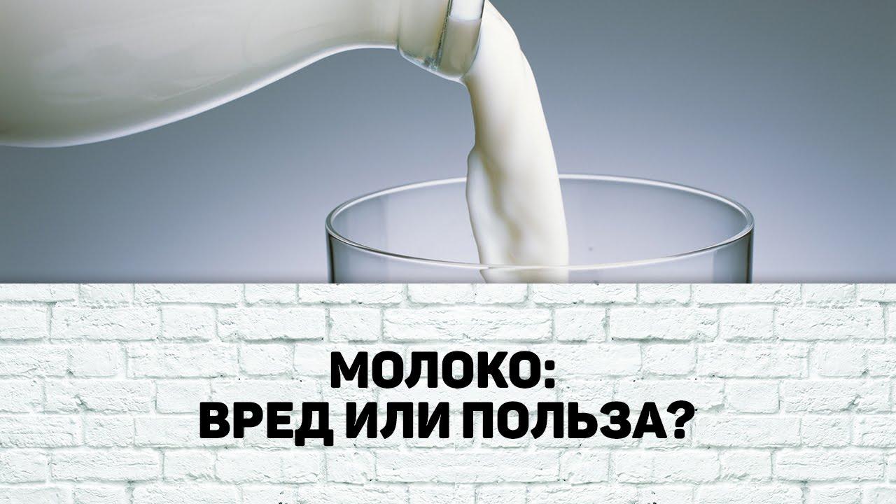 Бред про вред молока