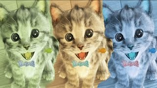 Kids Learn Colours With My Little Kitten Pet Care Colors Cartoon Compilations For Baby And TOddlers