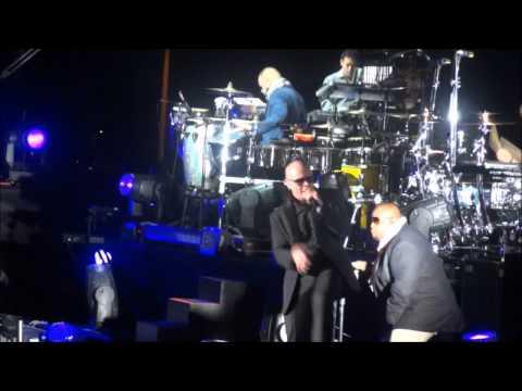 pitbull las vegas 2011