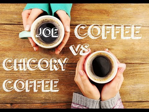 Why is Chicory Root Better than Coffee?