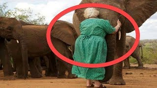 The Elephants Always Line Up To Hug This Woman. The Reason Why Left Me Speechless