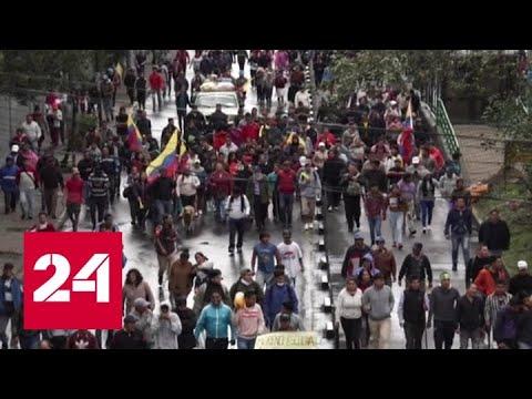 Правительство Эквадора из-за массовых протестов покинуло столицу - Россия 24