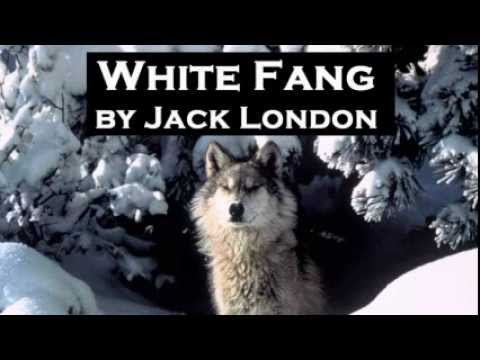 White Fang by Jack London - FULL Audio Book - Adventure Fiction
