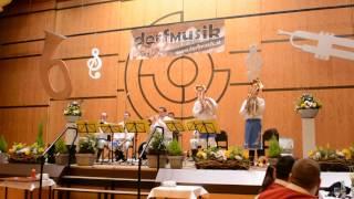 eine kleine dorfMusik - Musikantenball 2014 - 3