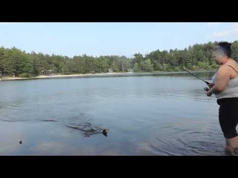 Large Mouth Bass fishing Myles Standish State Park