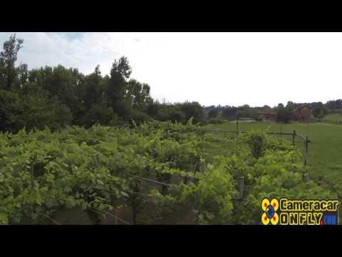 Wine Filmed Drone - Vineyard & Aerial Video footage of the vineyard