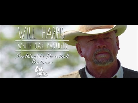 Will Harris: 2014 Growing Green Award Sustainable Livestock Producer