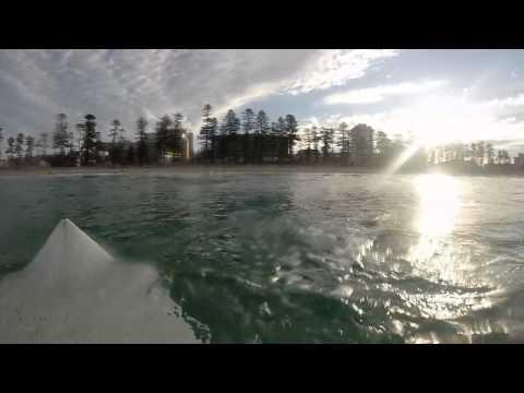 Great White Shark Circles Around Surfer
