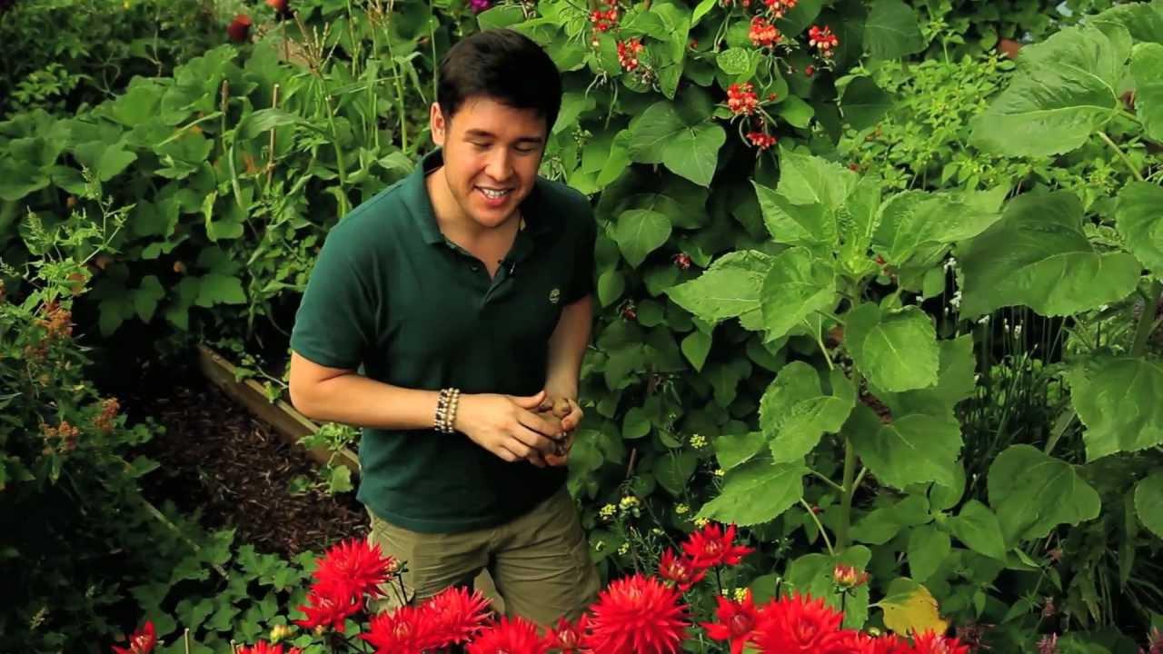 james wong florist