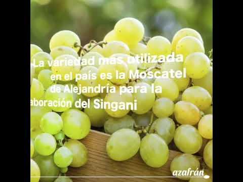 Uva: La fruta que conquistó al mundo
