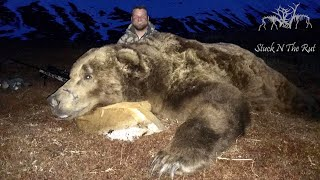 GIANT BROWN BEAR HUNT!!! - Stuck N The Rut 108