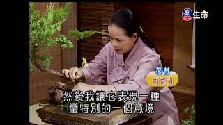 生命電視台2017-10-03 11:00 電視轉錄上傳。「佛心花海」之「自採茶煎_...